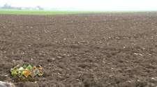 Dobra priprema i obrada zemlje presudne za prinos i kvalitet pšenice /VIDEO/