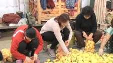 Žene na selu ogroman potencijal /VIDEO/