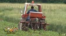 Za poljoprivrednu proizvodnju isplaćeno 1,5 miliona KM