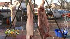 U semberskim selima sezona svinjokolja u punom jeku /VIDEO/