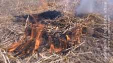 Bijeljina : Sve više požara na otvorenom prostoru /VIDEO/