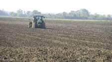 Miholjsko ljeto ide na ruku poljoprivrednicima /VIDEO/