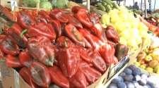 Prodaja povrća za zimnicu u porastu /VIDEO/