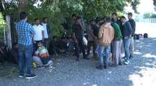 U Bijeljini  otkriveno 45 ilegalnih migranta